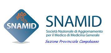 logo snamid